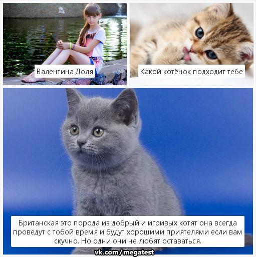 Валентина Доля | Донецк