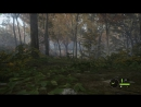 TheHunter Call of the Wild GamePlay
