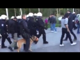 Finnish police use tear gas against migrants in deportation operation