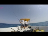 This is Egypt. Fishing trip. Red Sea