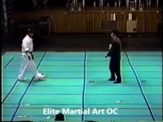 Korea Hapkido Association 1993 Demonstration
