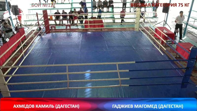 17-ые всероссийские сорев. по боксу класса А посвящённый памяти МС СССР Гамзаева М.Г. день 2 продолжение