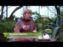 Валерия Букина. Развитие интенсивного сельского хозяйства. Интервью Часть 1