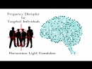 TARGETED INDIVIDUALS FREQUENCY DISRUPTOR ✔ STOP ELECTRONIC HARRASSMENT