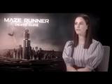 kaya scodelario | the maze runner [ vine ]