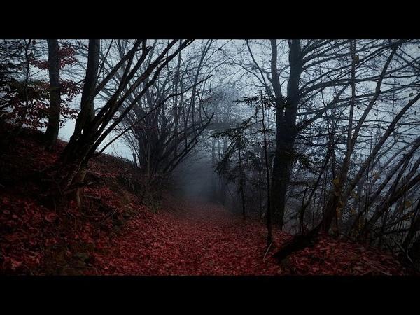 Elderwind - Fires of Autumn (2018 - New Song)