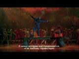 Сюжет шоу OVO от Cirque du Soleil