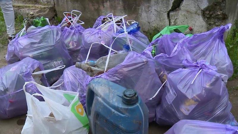 300 батареек и три контейнера отсортированного мусора собрали вологжане – участники экоакции ОНФ