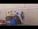 соревнования по спортивной гимнастике г.лиси 16.11.17г