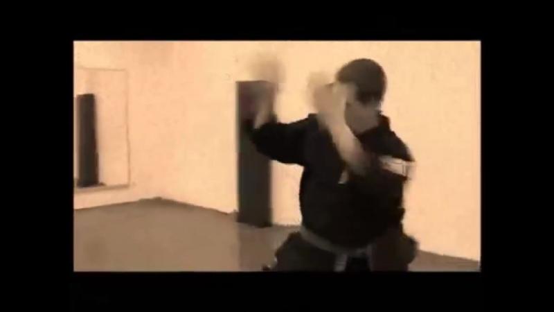 Джефф Спикмэн - Кенпо Каратэ, Реальный бой, Эд Паркер и Брюс Ли.mp4