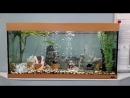 Аквариум Juwel Rio 300 прямоугольный (350 литров)