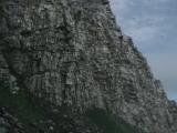 BBC - чудеса живой природы 2 часть