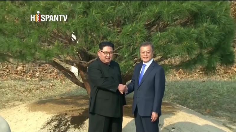 Líderes de las dos Coreas plantan un árbol en la frontera como símbolo de paz