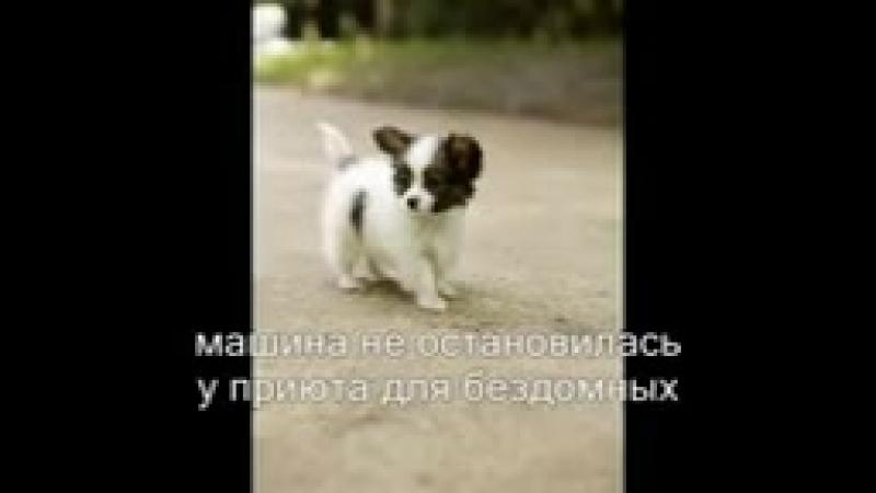 Kak_zhe_ty_mog..._