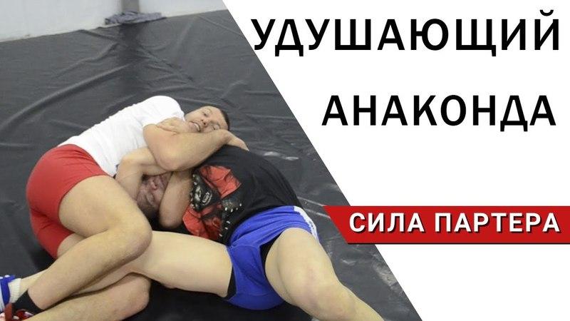 Удушающий анаконда и защита от прохода в ноги, как лучшая комбинация противостоять борцу eleif.obb̆ fyfrjylf b pfobnf jn ghj[