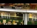 В магазине Усть Терем 11 микрорайон свободно разгуливают тараканы