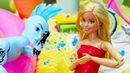 Куклы Барби на пляже - Видео для девочек - Встреча с Вейком