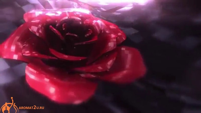 Bvlgari Rose Essentielle / Булгари Роуз Эссеншиал реклама духов