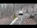 Нивка на зимке в грязи