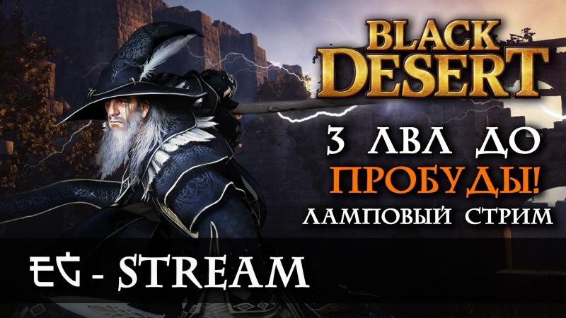 BLACK DESERT STREAM 3 ЛВЛ до Пробуды Продолжаем серию ламповых стримов