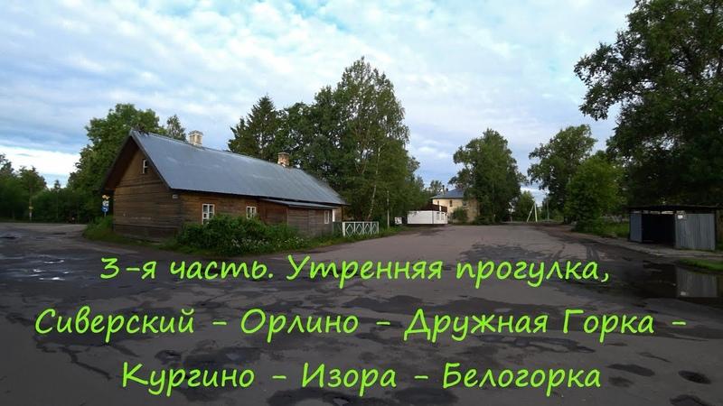 3-я часть. Сиверский - Орлино - Дружная Горка - Кургино - речка Орлинка - Изора - Белогорка