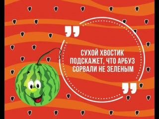 5 секретов спелого арбуза