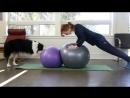 Парная йога. Версия с мячами