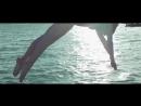 David Guetta - The World Is MineVitalik Solt Remix Video Edit