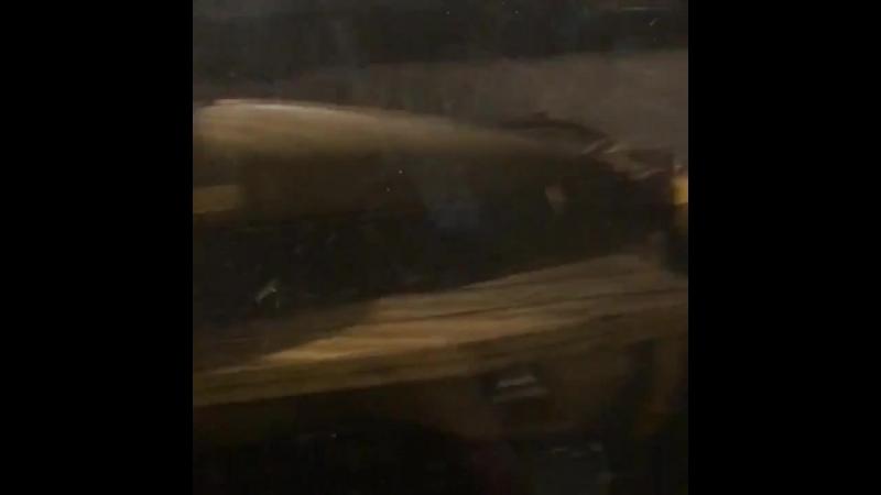 ВоркутаНеМёд | Водитель снегоуборочного шнекоротора устроил массовое ДТП в Воркуте