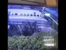 Пьяный мужчина свалился с крыши надземного перехода на проезжавшую по дороге Геленджика машину.