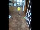 Дуська играет с воздушным шариком, хорошая профилактика страха громких звуков при лопнувших шарах.