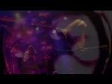 Siena Root - Root Rock Pioneers (Official Video)