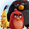 Angry Birds Activity Park в Санкт-Петербурге