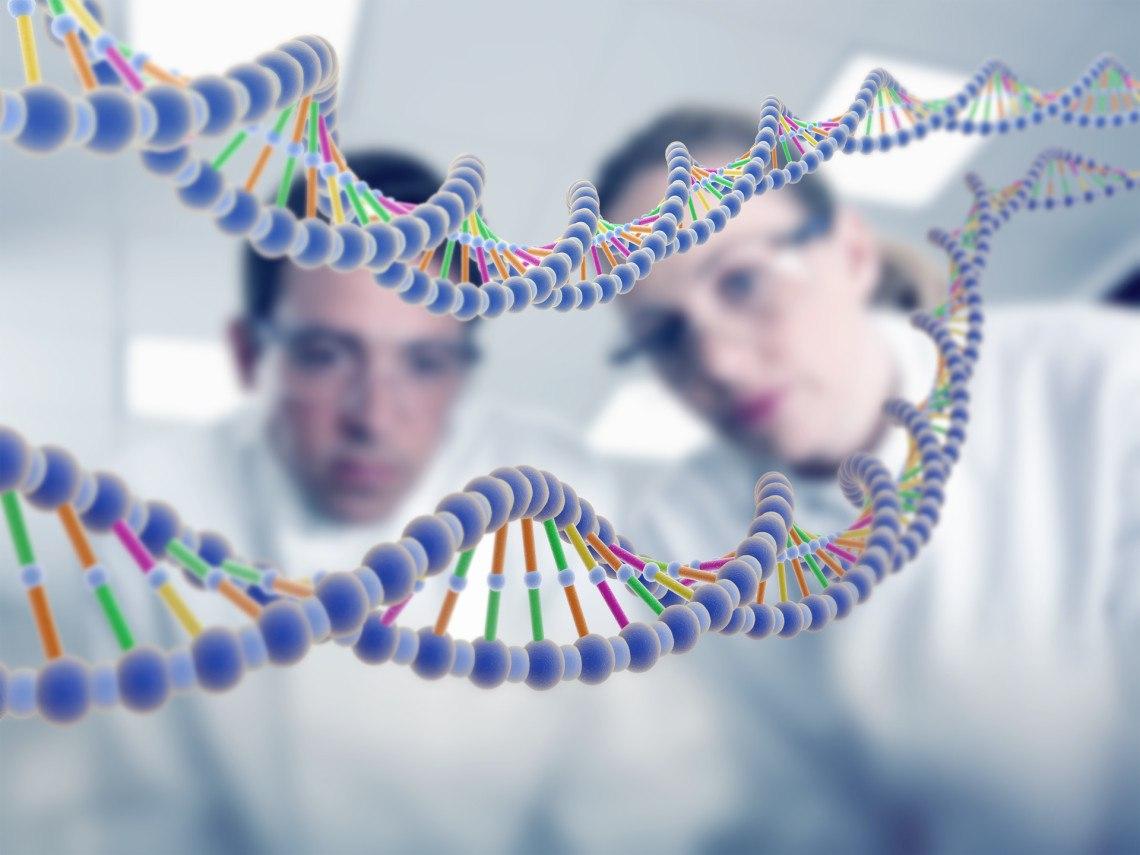 Что такое набор для тестирования ДНК?