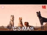 Дублированный трейлер фильма «Остров собак»