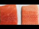 Как правильно выбрать лосося