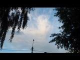 Облака. Кошка в небе. Прогулки со Светлановой.