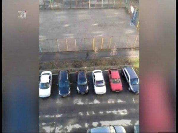 В Калининском районе неизвестный закидал камнями стекла многоэтажки