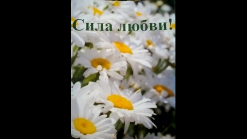 Сила любви - читает автор Т.С.