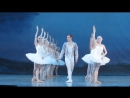 Из балета Лебединое озеро, 24.01.2018