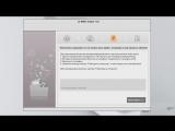 Optimus L7  P705  update Error
