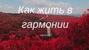 СВЕТОЗАР Игорь Яцков Как жить в гармонии