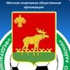 Федерация футбола Троицко-Печорского района