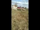 ветер, полянка и велик