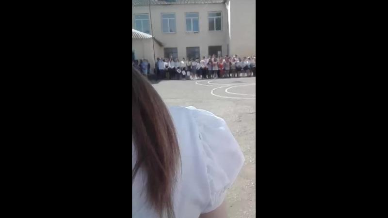 Полина Гаер - Live