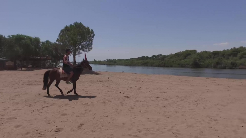 Titanic Deluxe Golf Belek - Horse and Pony Ride