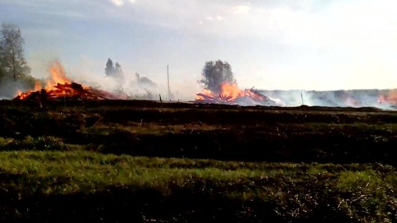 В Холмогорском районе сгорели четыре дома, баня и гектар леса