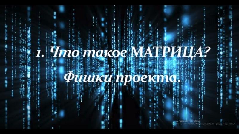 Видео 1 Что такое Матрица фишки проекта