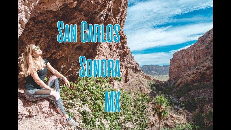 ЧЕМ ЗАНЯТЬСЯ В САН КАРЛОСЕ? МЕКСИКА| San Carlos, Sonora tatiph_mexico