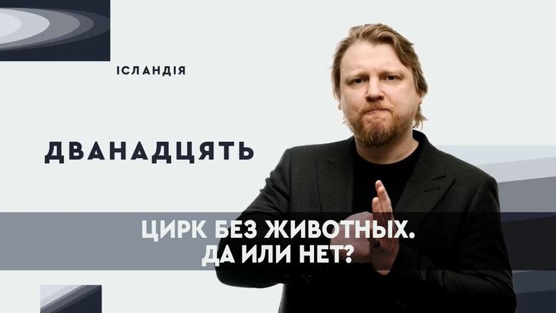 Украинские цирки должны отказаться от использования животных? | ДВЕНАДЦАТЬ
